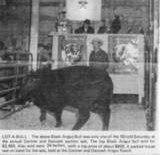 Newspaper clipping of GDAR's 2nd sale.