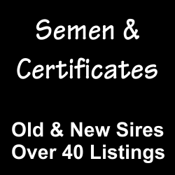 Semen and Certificates